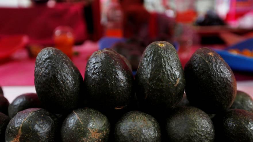 US 'clamouring for avocados' after Trump threat to shut Mexico border