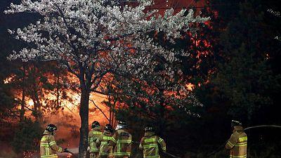 Thousands flee wildfire in South Korea's eastern coast, one dead - Yonhap