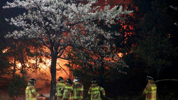 Thousands flee wildfire in South Korea's eastern coast, one dead - Yonhap