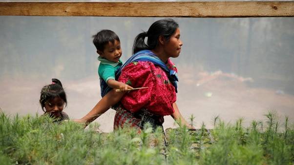 U.S. aid helped Guatemalan farmers stay rooted to their lands