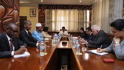 Foreign Minister's visit to Kigali commenced: Zohrab Mnatsakanyan's meeting with Donatille Mukabalisa, the Speaker of the Chamber of Deputies of Rwanda