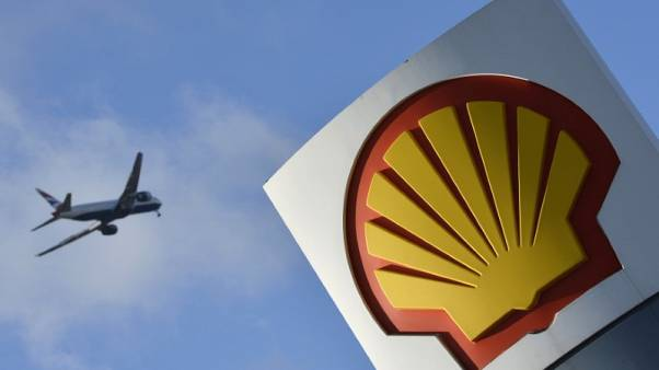 Shell starts to offset some drivers' carbon with new trees