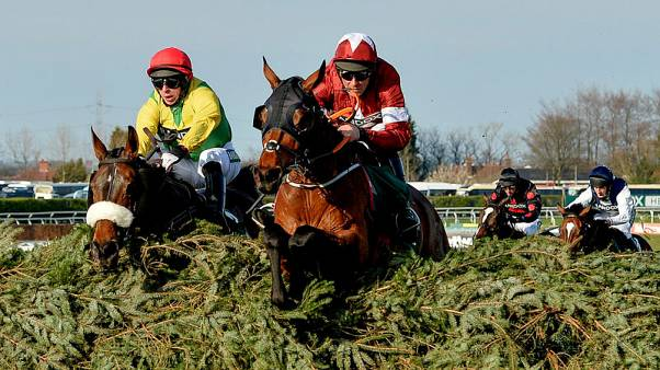 William Hill squeezes profit from Tiger Roll's second National win