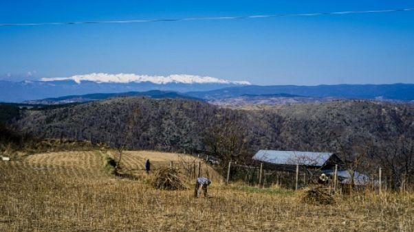 Une famille de Brachten, en Bulgarie, travaille au champ le 23 Mars 2019.