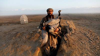 'A hunter's hope' - Snaring birds in warring Afghanistan