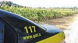 Cantina Montalcino dichiara falso su uve