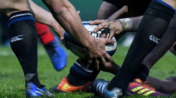 Coupe d'Europe de rugby: un dernier carré royal