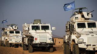 Killing of Egyptian peacekeeper in Mali 'may constitute war crimes' Guterres warns, urging 'swift action'