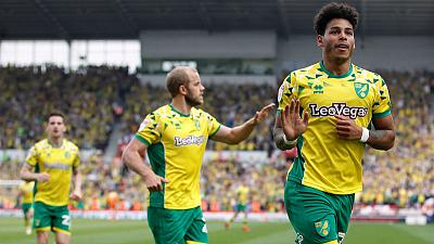 Norwich all but promoted to Premier League