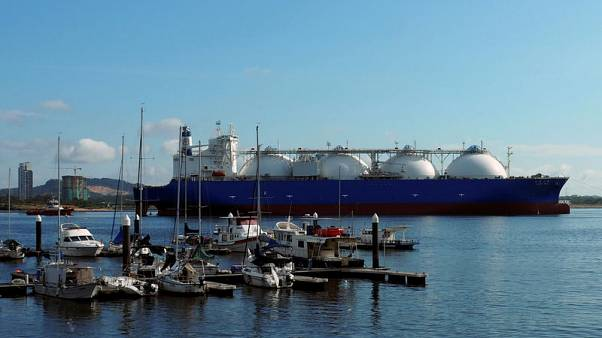 Glut forces LNG producers to offer flexible deals from global portfolios