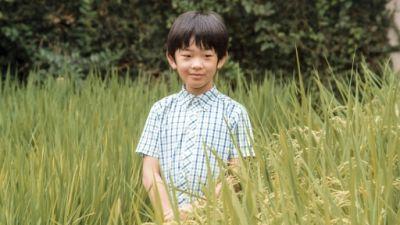Japon: des couteaux trouvés sur le bureau du prince Hisahito dans son école (presse)