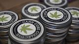 Segnalato ad Agcom manifesti cannabis