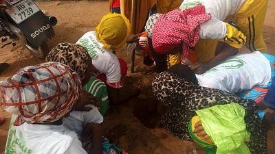 Rugby – Niger : Journée du 6 Avril au Niger, L'arbre de la Paix