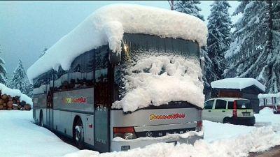 Fino a 80 cm neve fresca Dolomiti venete
