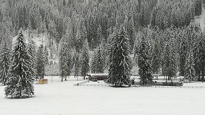 Veneto,neve e vento,colpo coda inverno