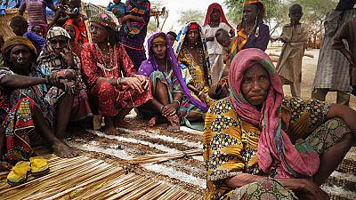 Japan-Funded Emergency Response in Niger