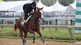 Horse racing - Improbable tops Preakness field missing Triple Crown drama