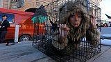 Italy's Prada joins the fur-free chorus