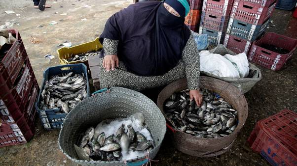 In Egypt's Nile Delta, fishermen's families hope for a bigger catch
