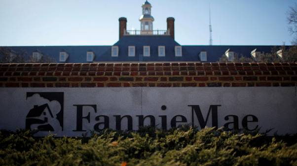 U.S. government could stagger Fannie, Freddie privatisation - regulator