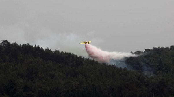 مصر ودول أوروبية ترسل طائرات لمساعدة إسرائيل في إخماد حرائق غابات