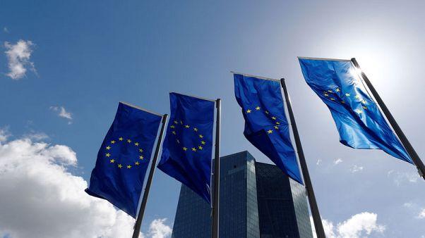 Euro zone household lending growth at decade high: ECB