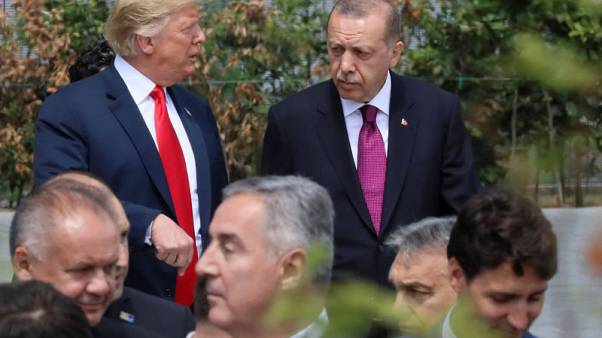 Trump, Erdogan agreed to meet at G-20 in June - Turkish official