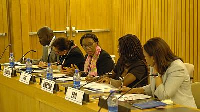 Songwe, UN heads of agencies discuss need for better coordination and delivery