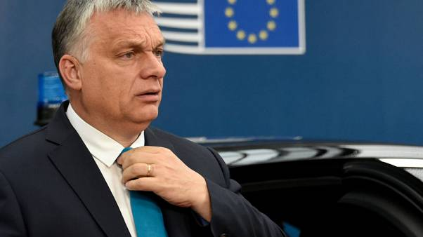 Hungary to shun Salvini's group in EU parliament - Orban aide