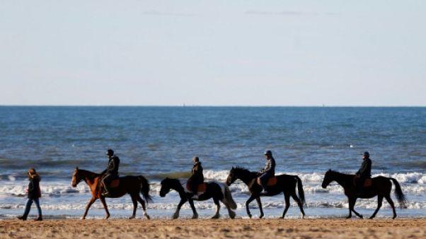 Des cavaliers sur la plage de Deauville, le 2 novembre 2018