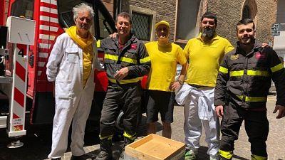 Cavallette in Sardegna, api a Bologna