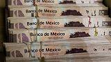 البيزو يرتفع بعد اتفاق أمريكي مكسيكي واليورو يهبط