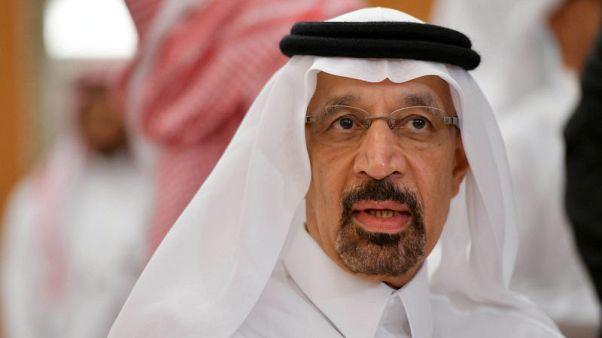 وكالة: الفالح يقول إن من المقرر أن يزور بوتين السعودية في أكتوبر 2019