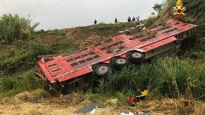 Camion si ribalta, muoiono 30 vitelli