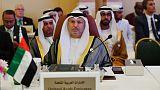 وزير: الإمارات تتواصل مع المعارضة السودانية والمجلس العسكري