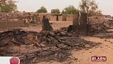 Mali massacre victims included 24 children - PM