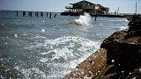 Near-record 'dead zone' forecast off U.S. Gulf coast, threatening fish