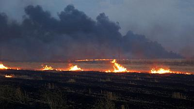 After years of war and drought, Iraq's bumper crop is burning