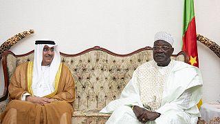 UAE, Cameroon boosting cooperation