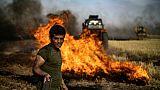 Des agricultures se battent contre un incident dans un champ de la région de Hassaké, dans le nord-est de la Syrie, le 10 juin 2019