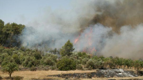 Un incendie près de Flix dans le nord-est de l'Espagne, le 27 juin 2019