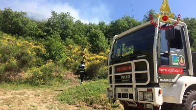 Incendio in bosco, canadair in azione