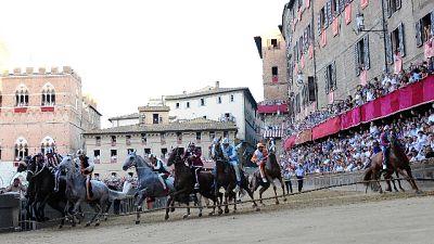 Palio Siena: assegnati i cavalli