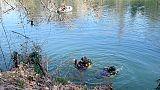 Turista svizzera scomparsa in lago Como