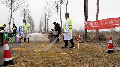Swine fever toll in China may be twice as high as reported, industry insiders say