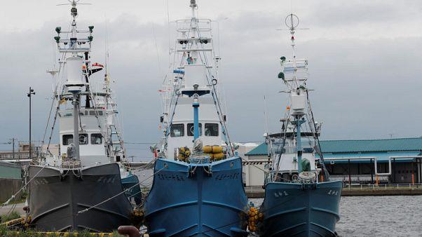 أسطول ياباني يستعد لاستئناف صيد الحيتان لأغراض تجارية