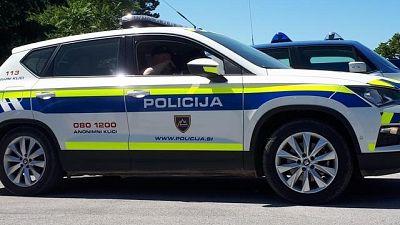 Migranti:Slovenia,4 pattuglie con Italia