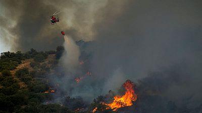 """الصندوق العالمي للحياة البرية يحذر من تفاقم """"الحرائق الهائلة"""" في أنحاء أوروبا"""
