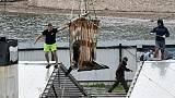 Russia to press ahead with release of captive whales despite outcry