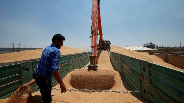 وزير التجارة: العراق يشتري قرابة أربعة ملايين طن من القمح المحلي